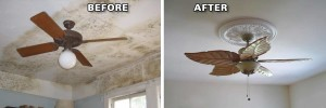 mold removal colorado springs before and after